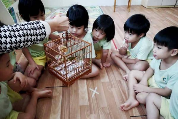 serangoon-gardens-loving-pets-01